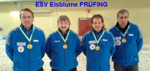 Bezirksmeister 2015